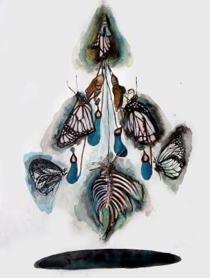 Schmetterling, techniques mixtes sur papier, 40x30 cm, 2013